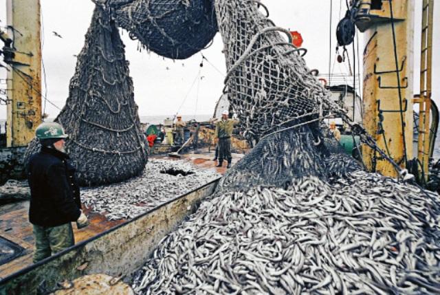 март 1994 рыбаки